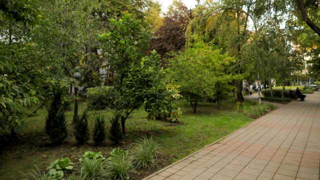 One United Properties and Auchan Romania have invested 178,000 EUR in Automatica park, near One Floreasca City