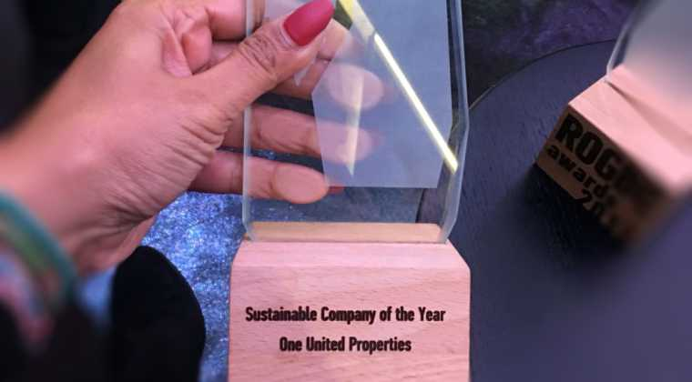 Sustainable Company of the Year 2017